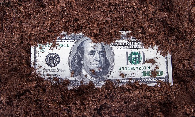 From drugs to feces, experts reveal what's REALLY on your cash