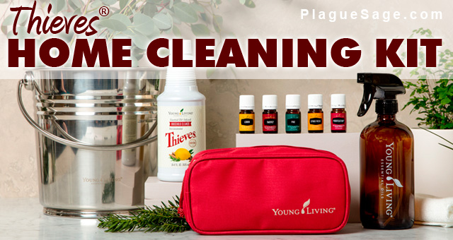Thieves Home Cleaning Kit